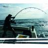 RIPPLE FISHER OCEAN VOYAGER GTXPEDITION : Encombrement (cm):89, Longueur (cm):247, Puissance (g):140, Puissance (PE):PE 6, Puissance de frein (kg):10