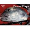 RIPPLE FISHER  GT Ocean Ridge : Encombrement (cm):173, Puissance (g):220, Puissance (PE):PE 10, Longueur (m):2.37, Poids (g):384, Puissance de frein (kg):15
